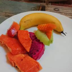viet fruit